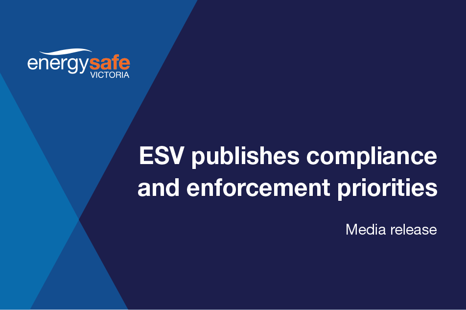 News item - ESV publishes compliance and enforcement priorities website image