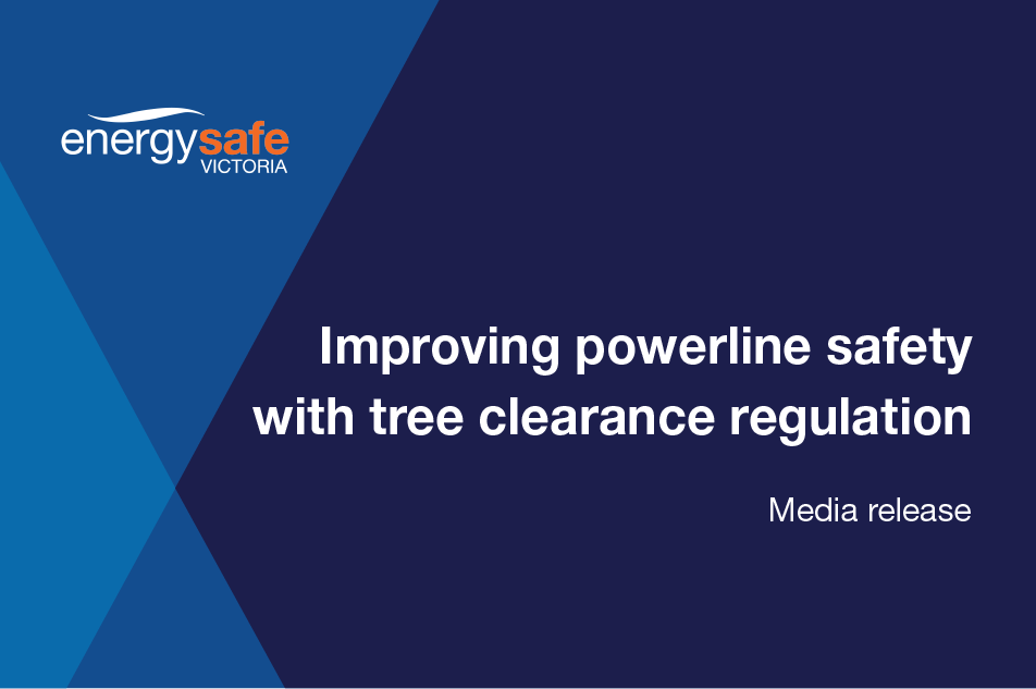News image - Improving Powerline safety with tree clearance regulation