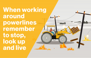WorkSafe image - safety around powerlines on farms